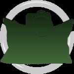 Camera bean bags logo